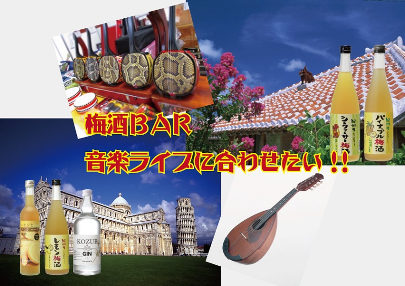 梅酒BAR 音楽ライブに合わせたい!