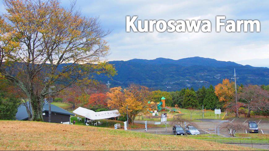 中野BC→黒沢牧場 海南市満喫コース♪
