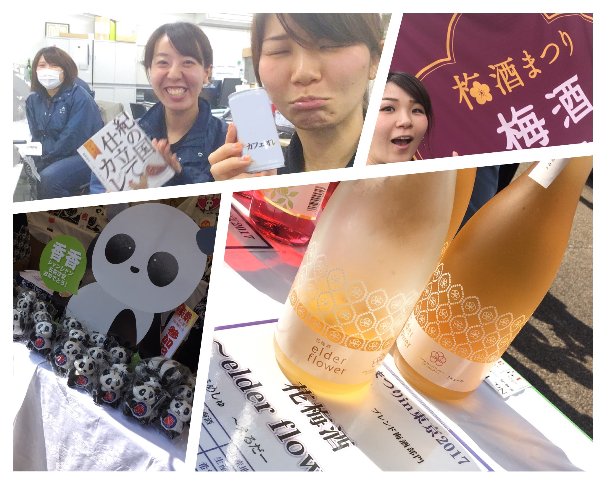 梅酒まつりにパンダまつり!上野の中心で想いを叫ぶ(ー