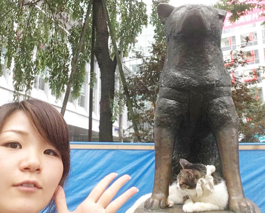 動物の街、渋谷?
