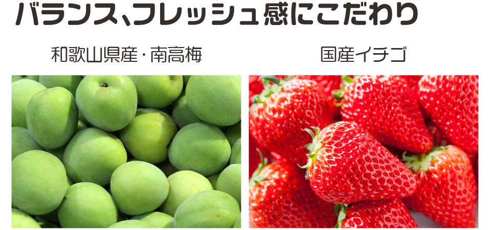 kishuichigo_02