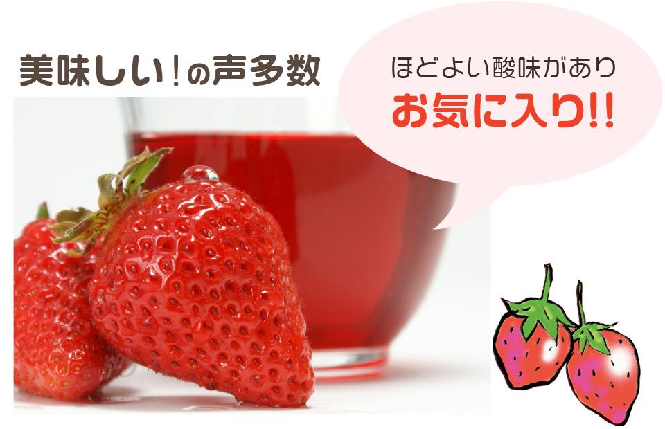 kishuichigo_03