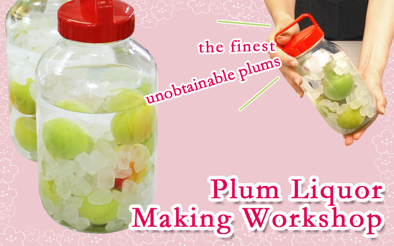 Plum Liquor Making Workshop On-going